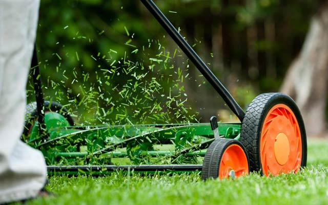 GV Green Lawn Mowing and Gardening - Shepparton, VIC 3630 - 0469 079 883 | ShowMeLocal.com
