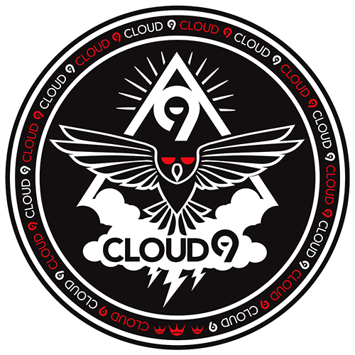 Cloud 9 Everything Inc.