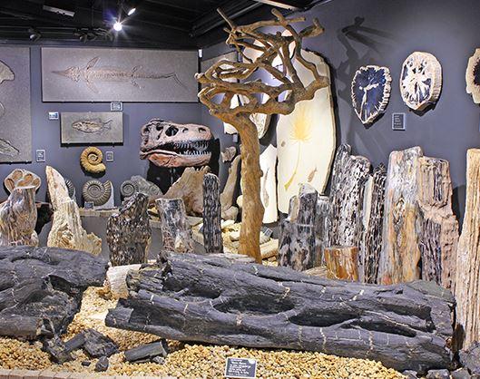 Welt der Kristalle Museum & Shop