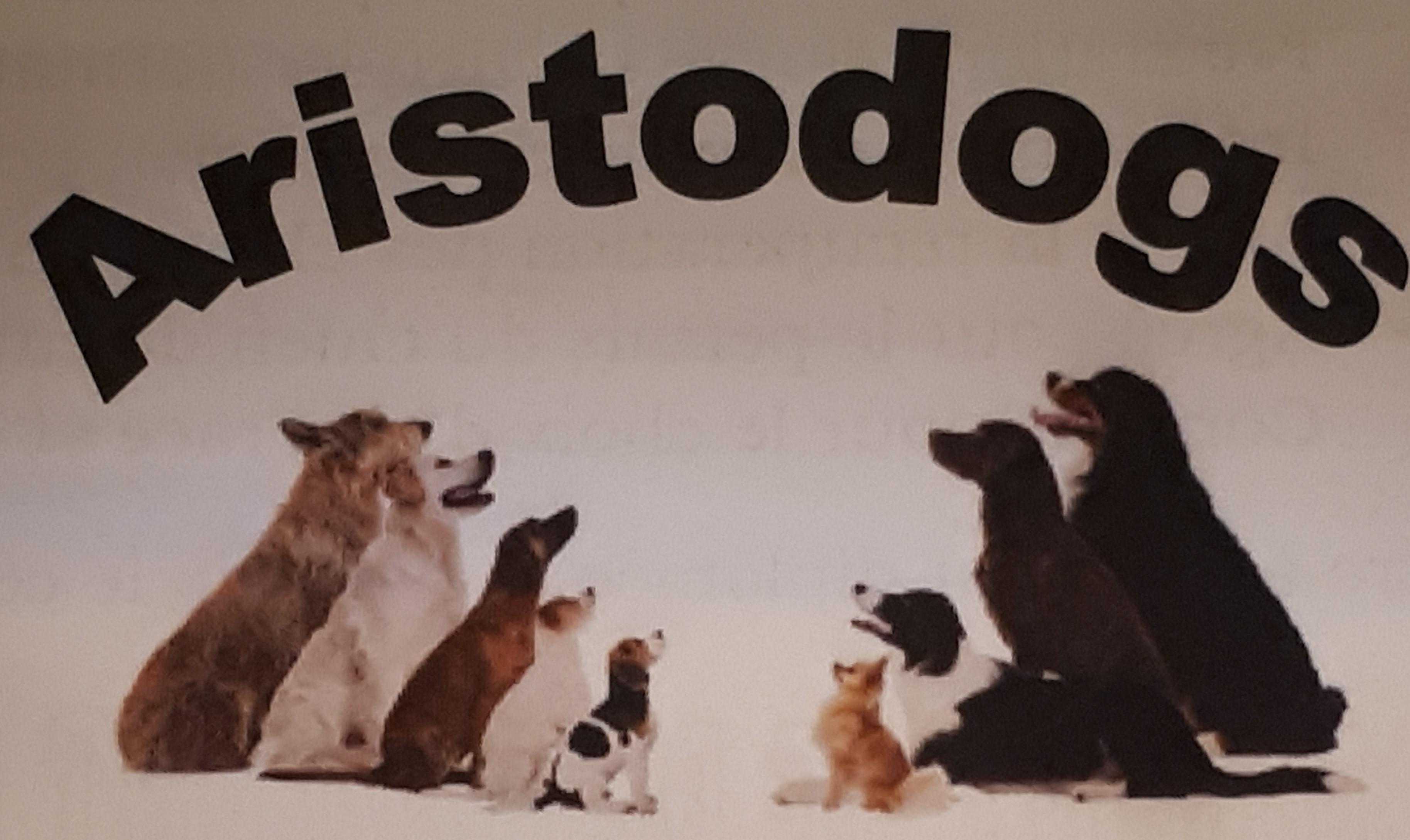 Aristodogs dressage animal