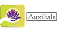 AUXILIALE SERVICE services, aide à domicile