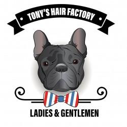 Tony's Hair Factory