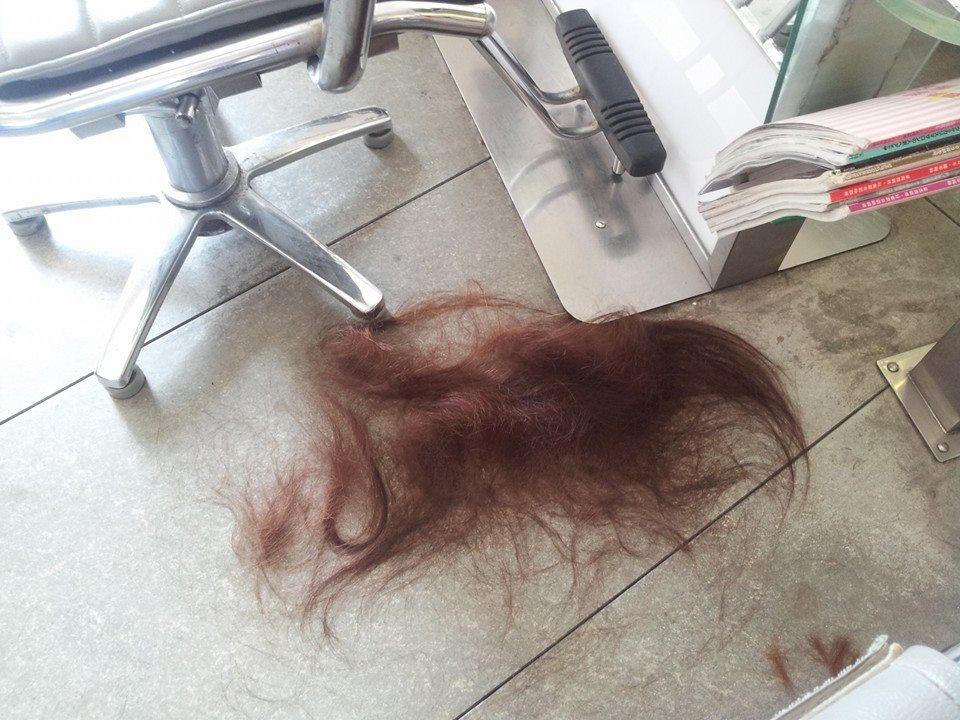 TWIN HAIR - Susanne Mozelt