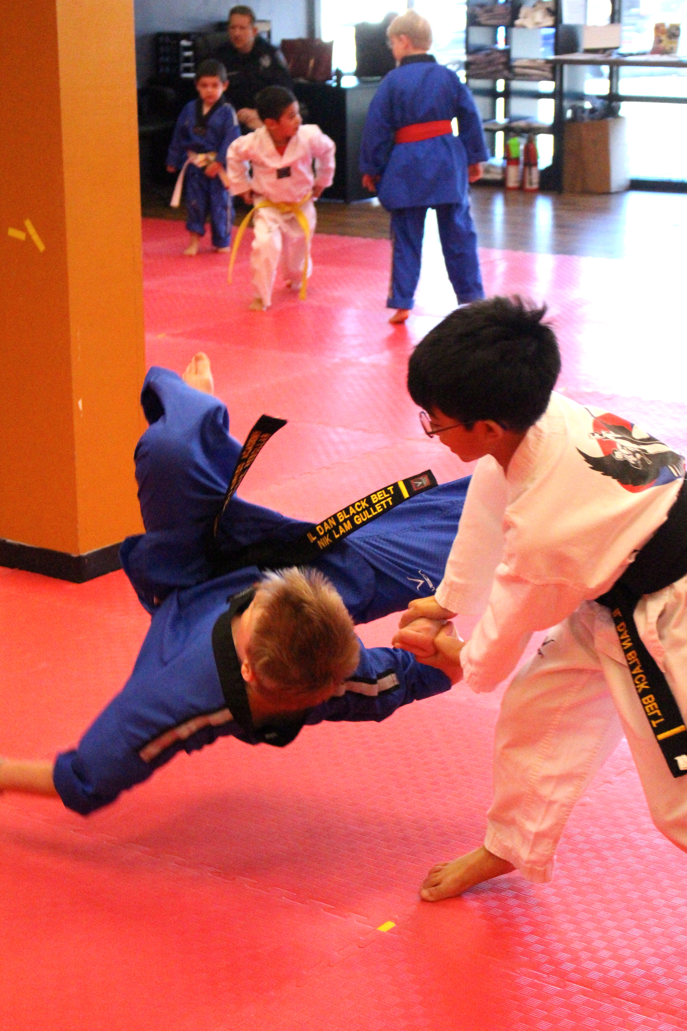 Family Martial Arts - Taekwondo Hapkido