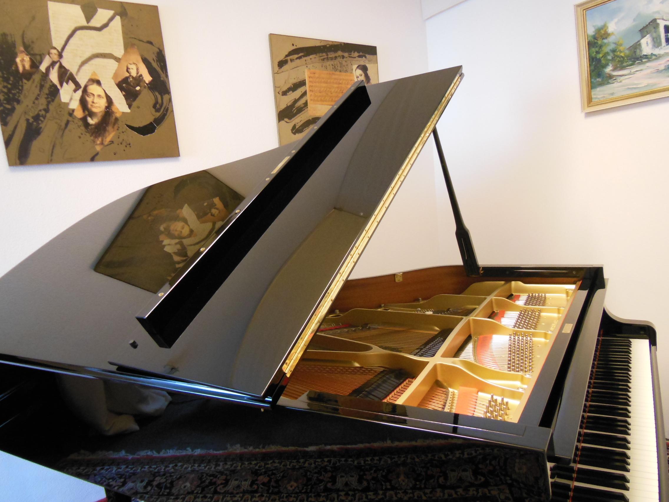 klavierunterricht freiburg-lee
