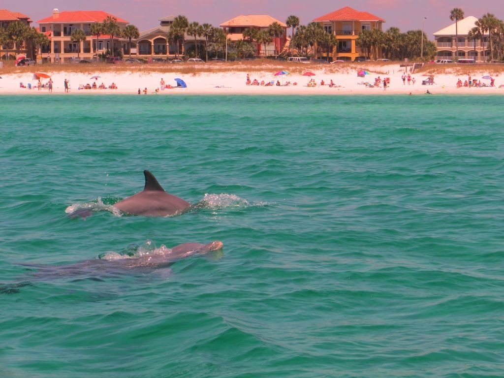 Crystal Sands - Destin Rentals