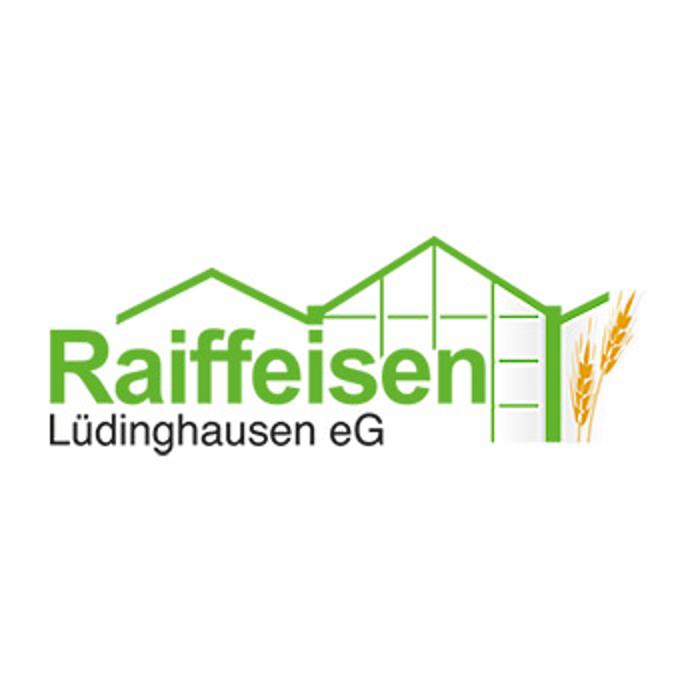 Bild zu Tankstelle Lüdinghausen der Raiffeisen Lüdinghausen eG in Lüdinghausen