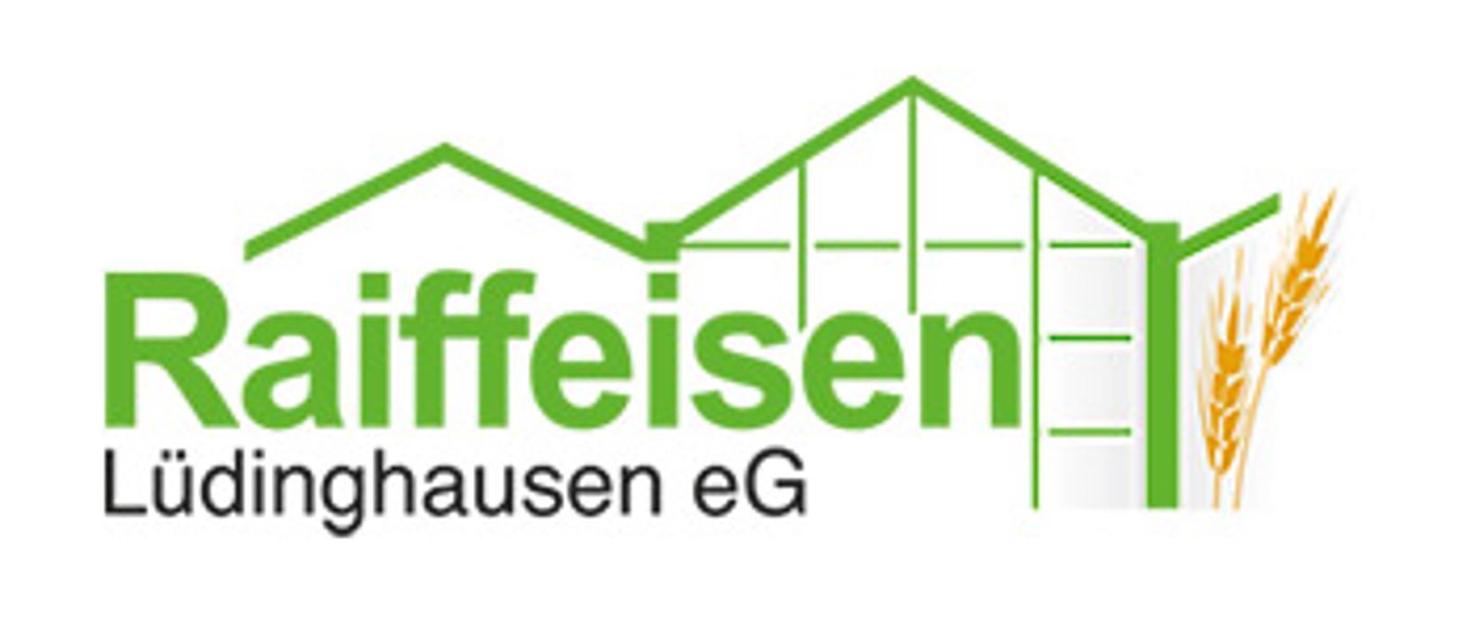 Logo von Tankstelle Olfen der Raiffeisen Lüdinghausen eG