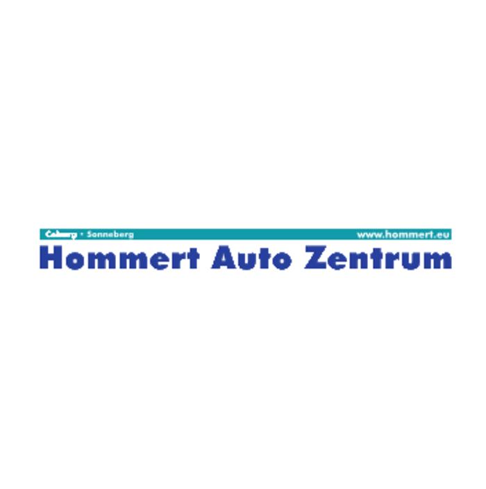 Logo von Hommert Auto Zentrum GmbH (Ford Store)