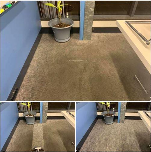 Jim's Carpet Cleaning Scarborough
