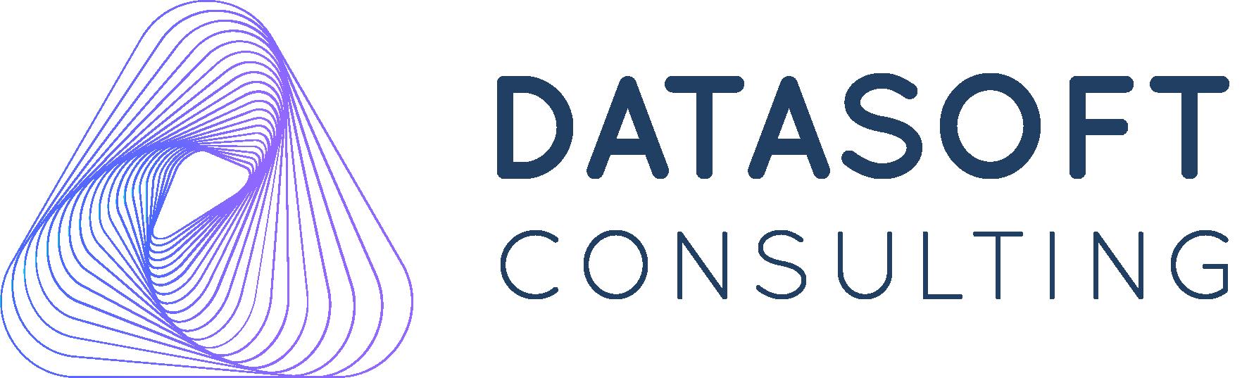 DATASOFT CONSULTING dépannage informatique