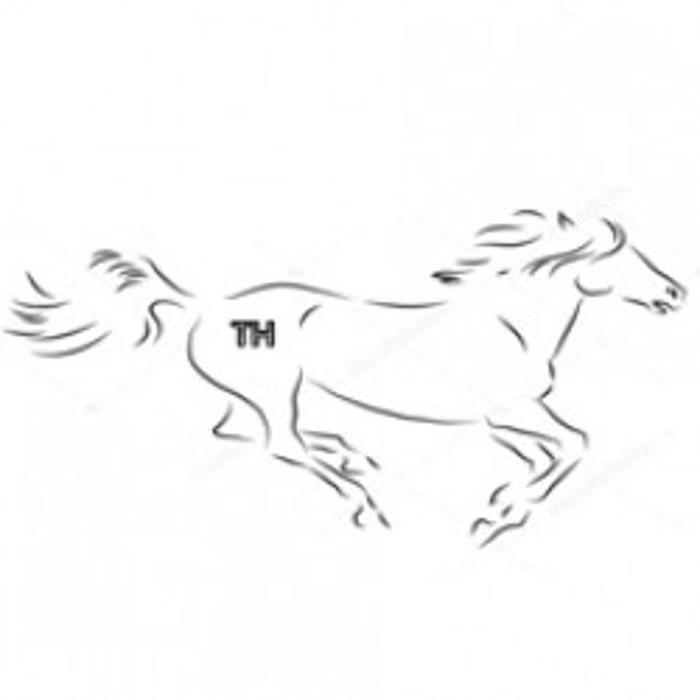 Bild zu Pferdeflüsterin in Erding