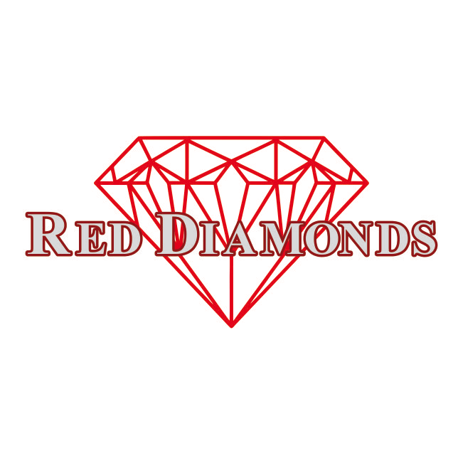 Bild zu Red Diamonds Showtanzgruppe Velden/ Vils e.V. in Vilsbiburg