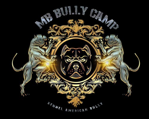 MB BULLY CAMP