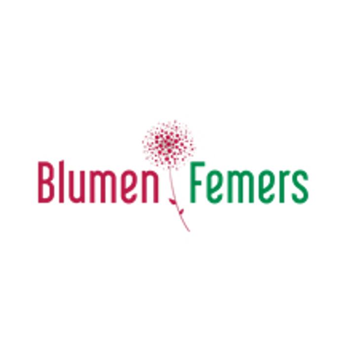 Bild zu Blumen Femers GmbH & Co. KG in Krefeld