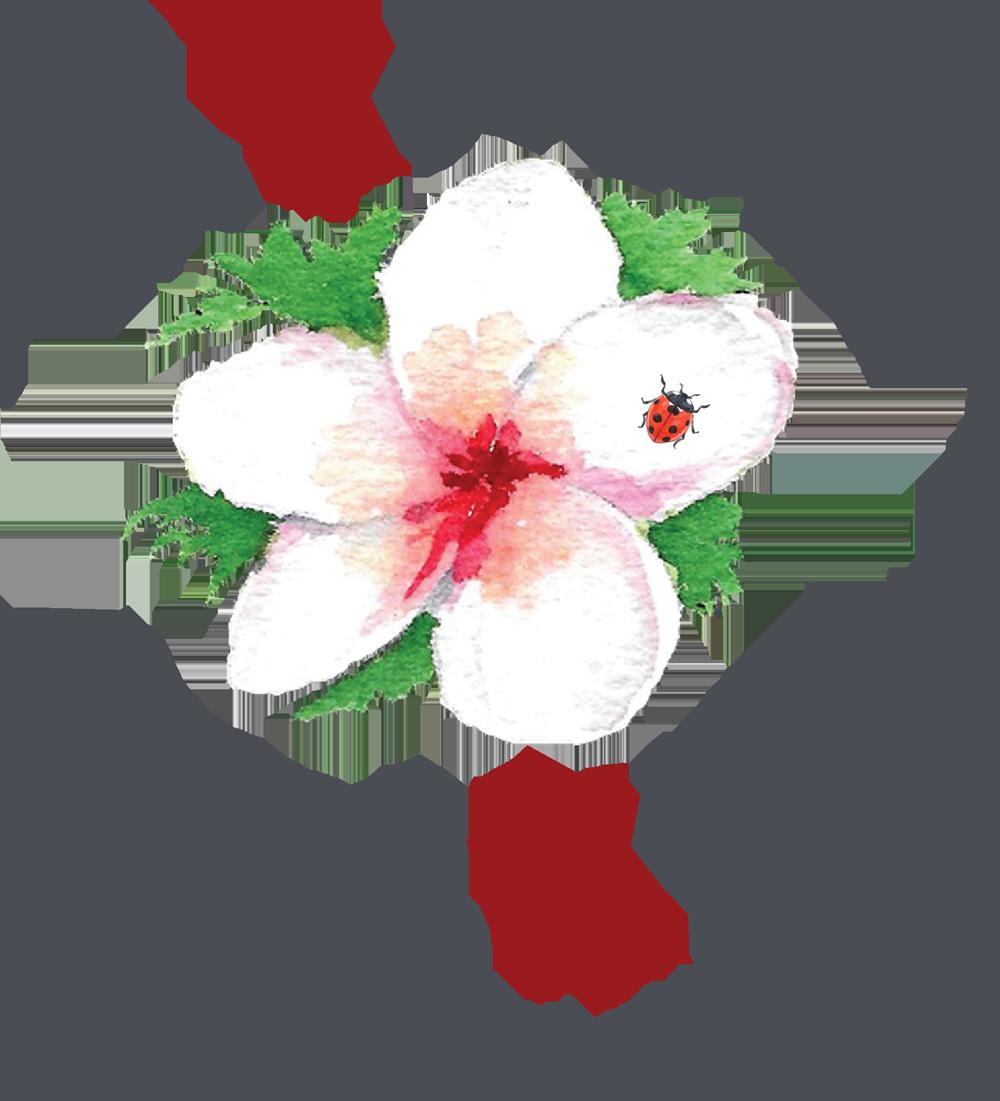 savonnerie tranche-de-cake