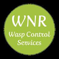 Wasp Control Hampshire