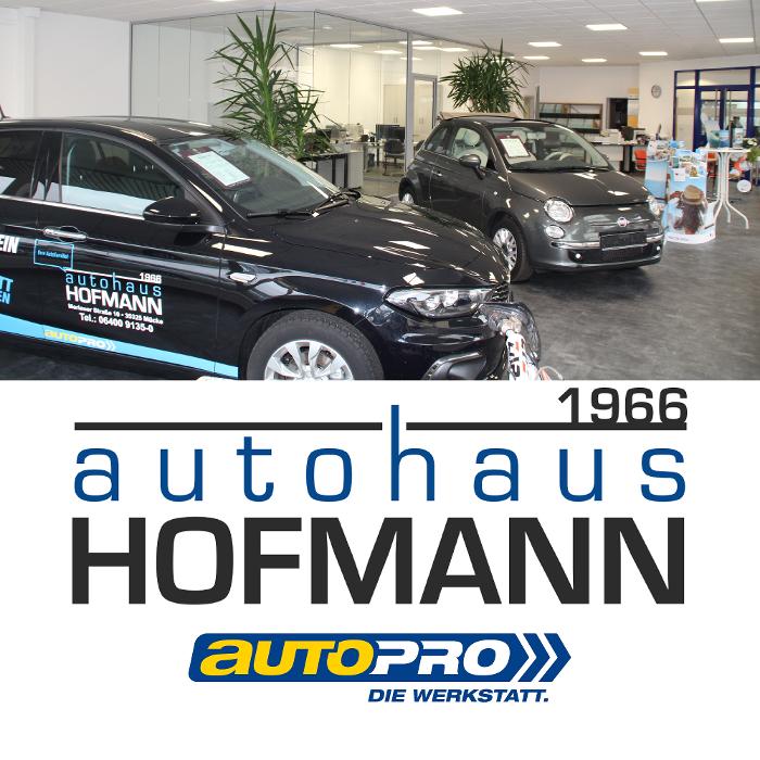 Bild zu Autohaus Hofmann, Inh. Nadja Sütcü e.K. in Mücke