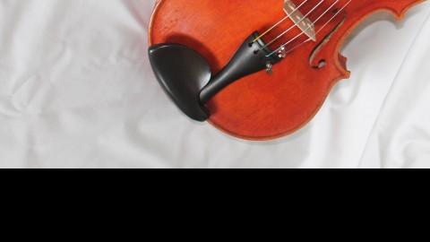 McPherson Violins