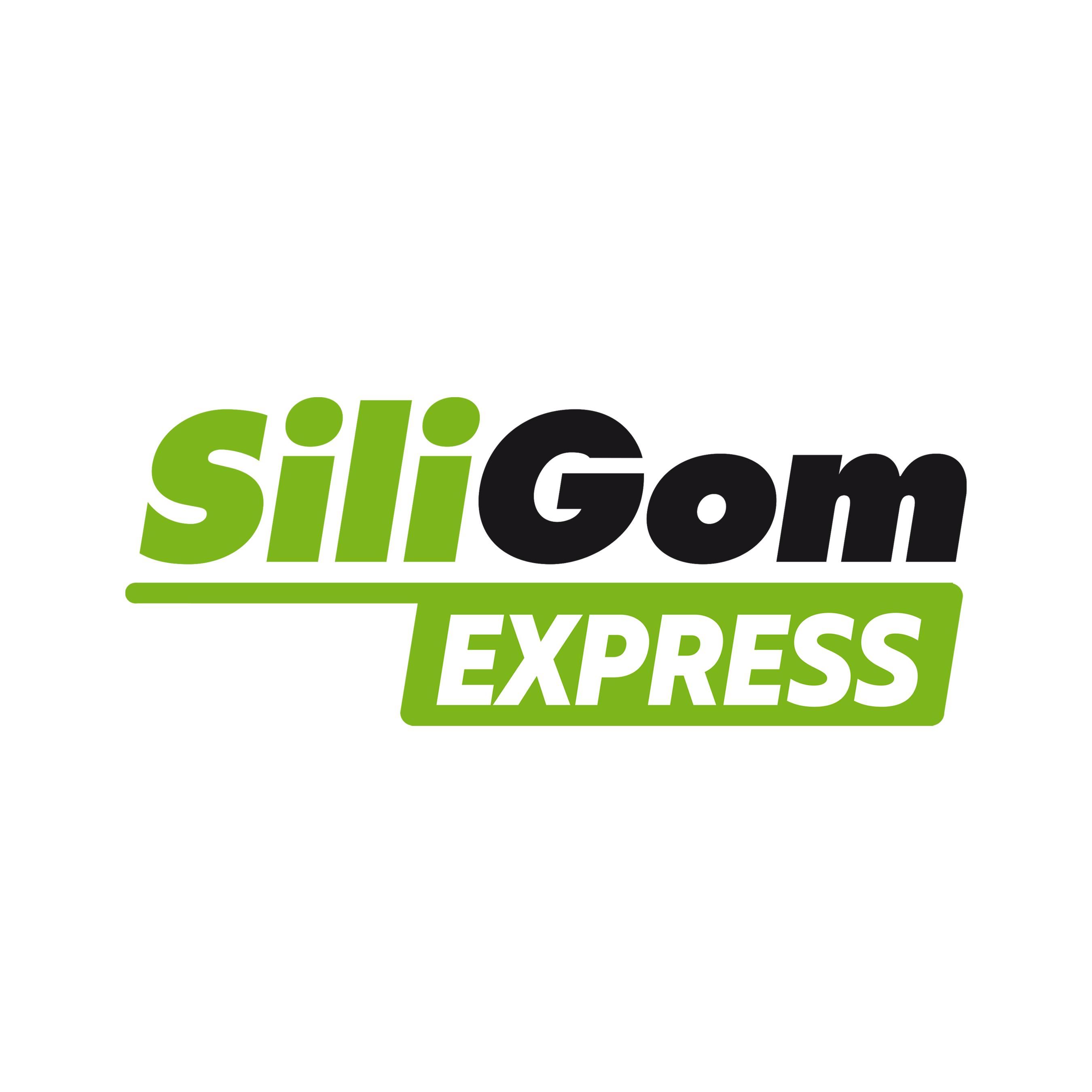 SILIGOM EXPRESS - PARIS 13e
