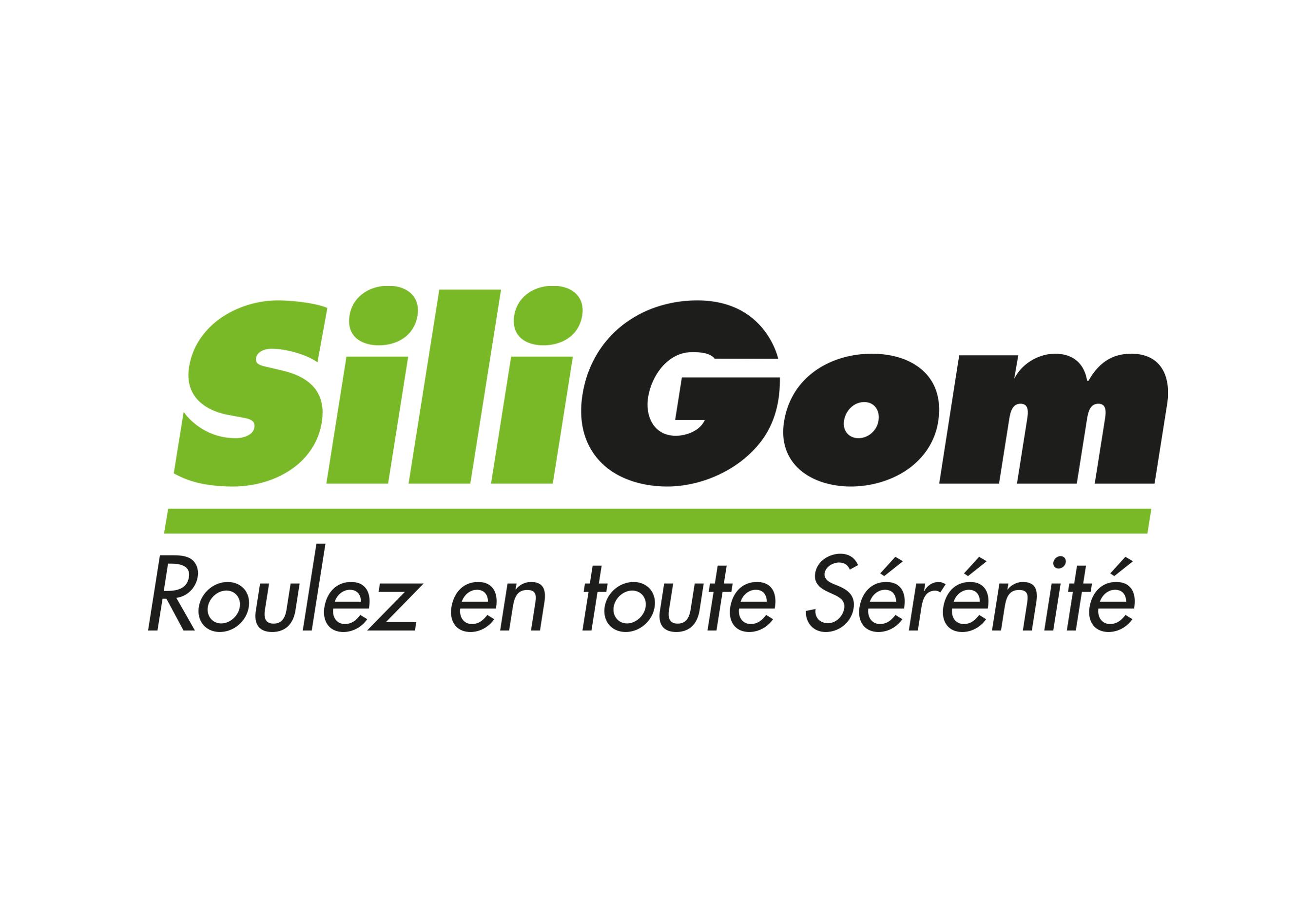SILIGOM - PNEU ROUTE 01