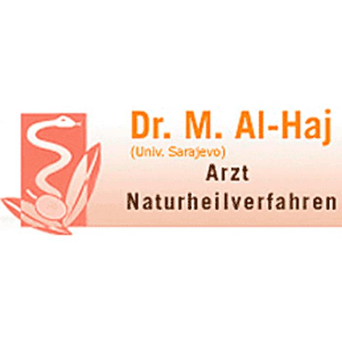 Bild zu Dr. Mujeer Al-Haj (Univ. Sarajevo) in Braunschweig