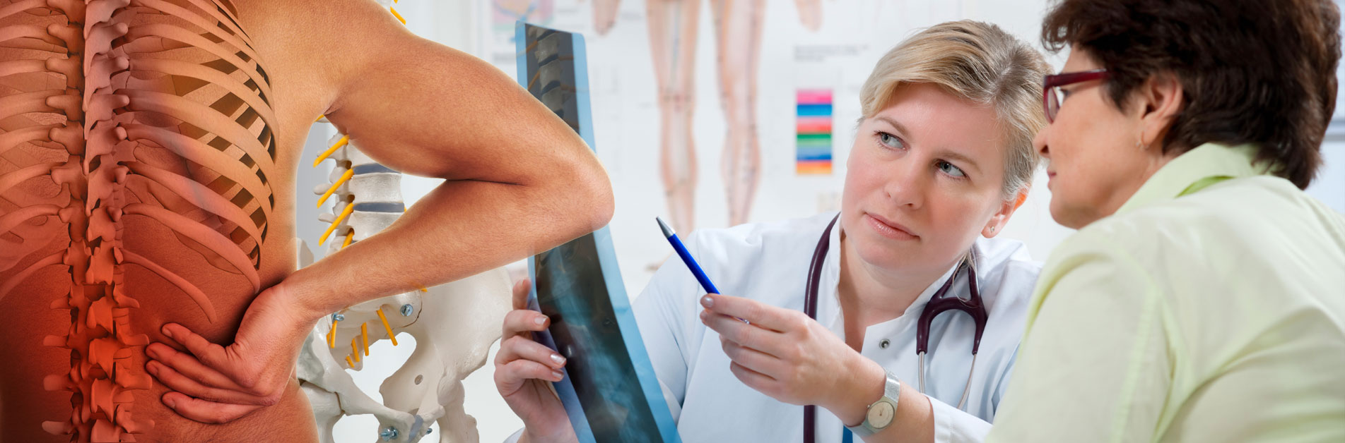 Stephen Hipkiss - Registered Osteopath