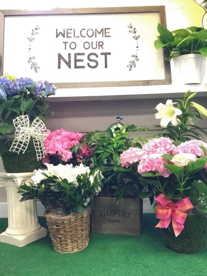 Robin's Nest Flowers & Gifts