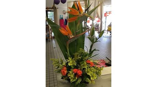 Conroy's Flowers