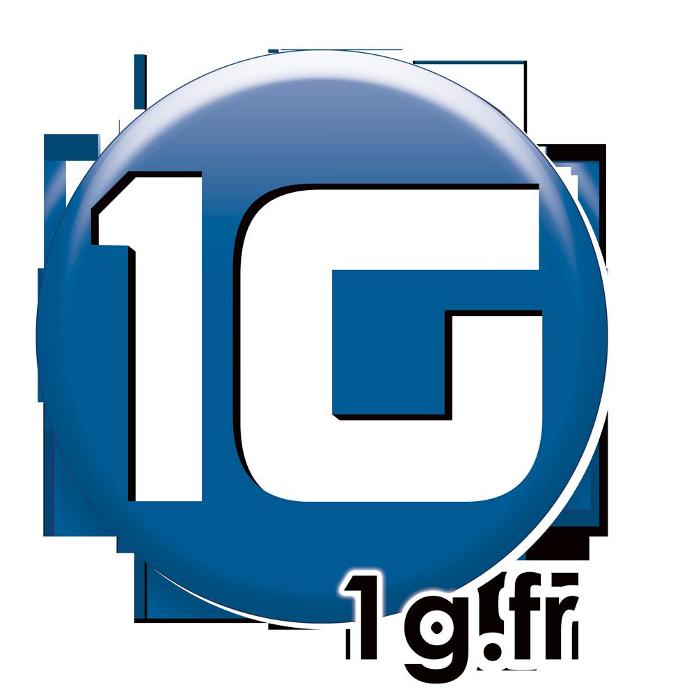1G SARL informatique et bureautique (service, conseil, ingénierie, formation)