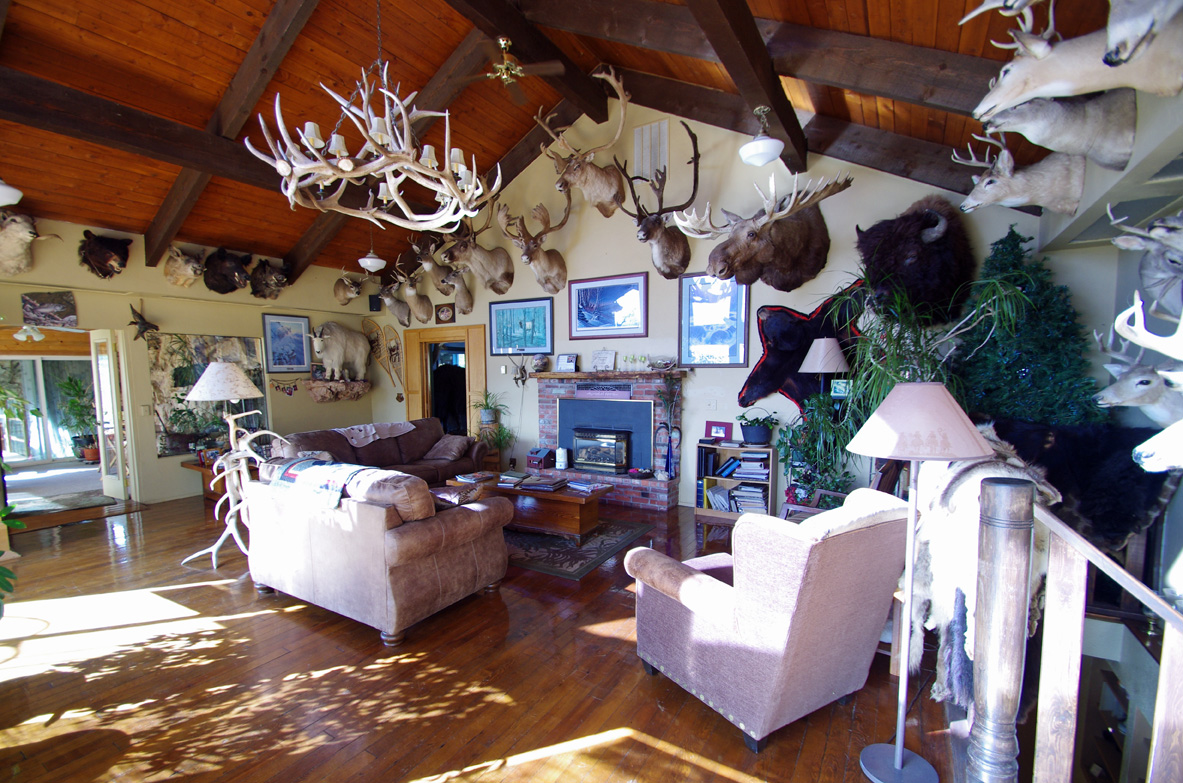 Whitebird Summit Lodge & Ranch