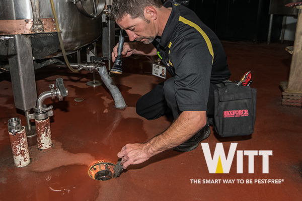 Witt Pest Management