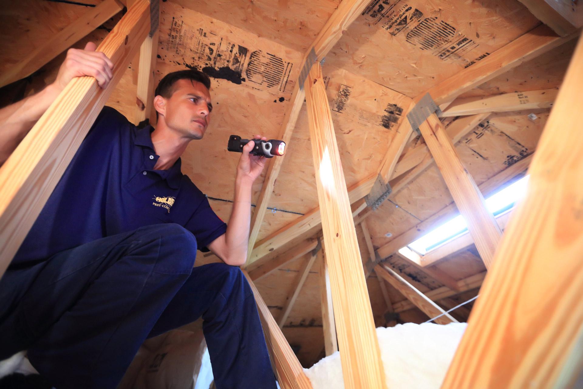Holder Pest & Termite Control