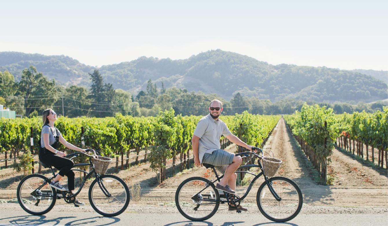Napa Valley Bike Tours & Rentals