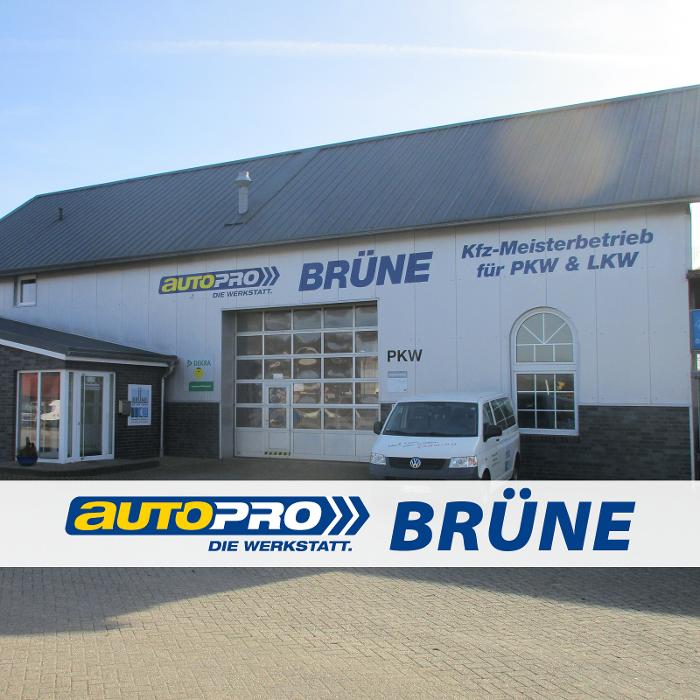 Bild zu Brüne GmbH & Co. KG in Freren