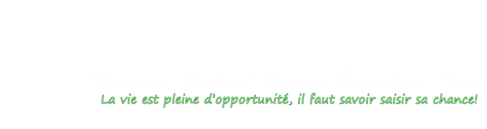 Al Houssein Sakho - excellent voyant-medium-marabout