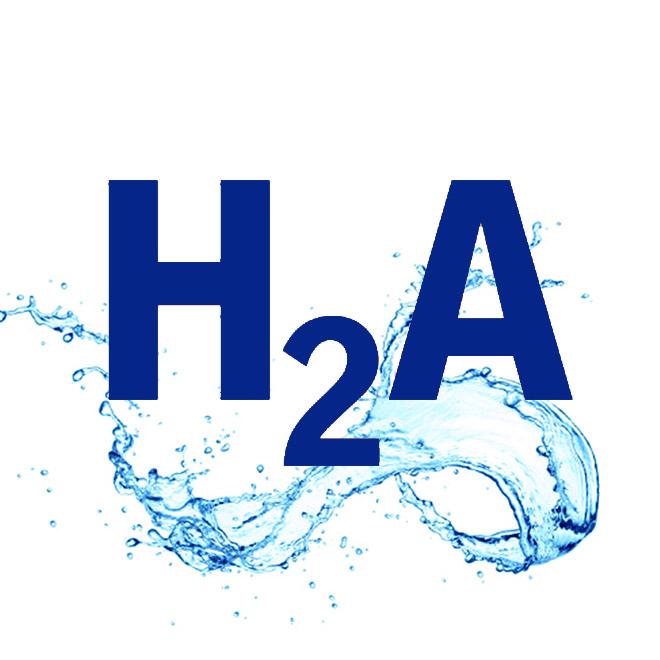 Atelier H2A - Prof. DI. MSc. Mona Bayr