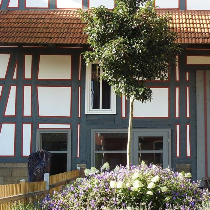 abclocal - discover about Gerhard Jes Krebs Business Coaching Training Events in Knüllwald