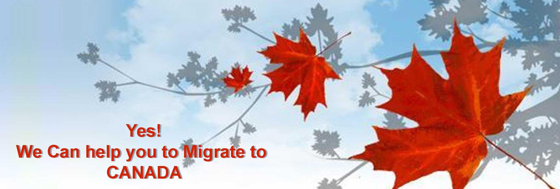 immigration-canada-quebec.ca - L'Épiphanie, QC J5X 3K8 - (450)588-5267   ShowMeLocal.com