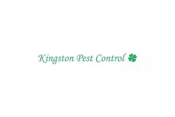 Kingston Pest Control