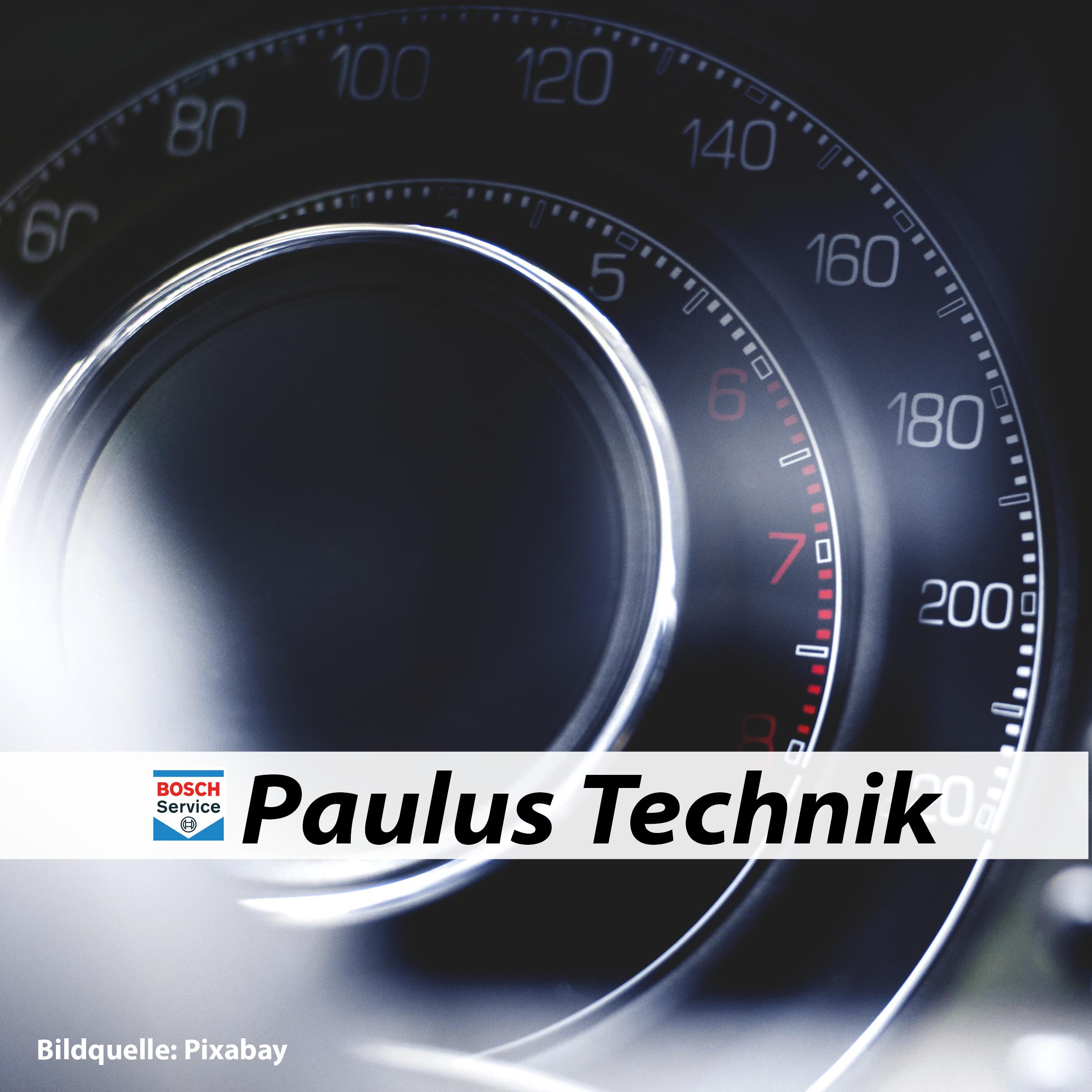 Paulus Technik GmbH & Co. KG