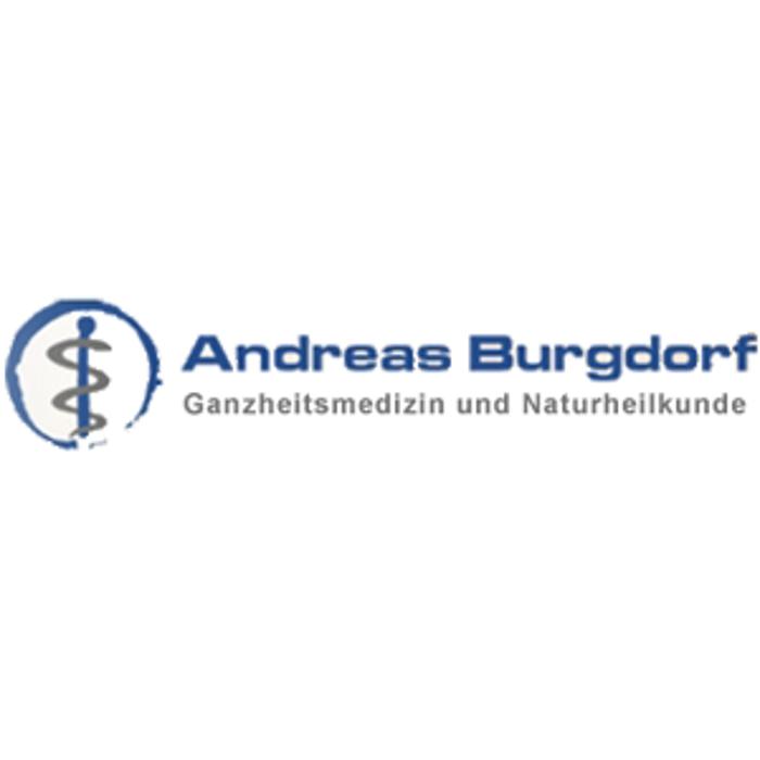 Bild zu Institut für Ganzheitsmedizin Andreas Burgdorf in Braunschweig