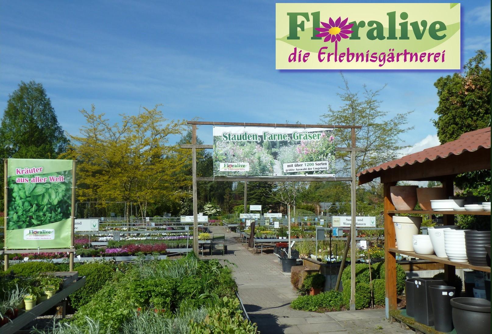 FLORALIVE Gärtnerei