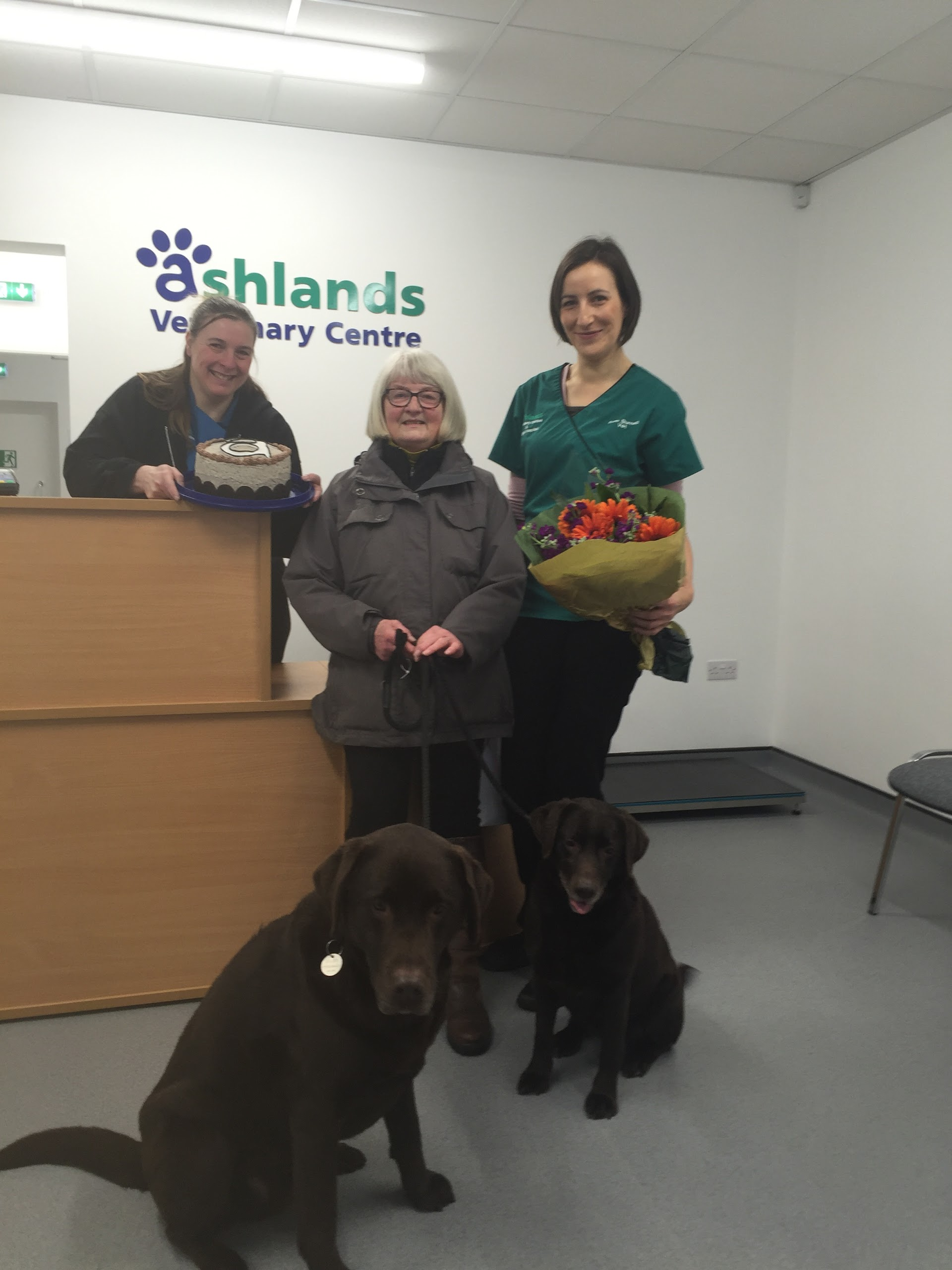 Ashlands Veterinary Centre, Skipton - Skipton, North Yorkshire BD23 2AB - 01756 636999   ShowMeLocal.com