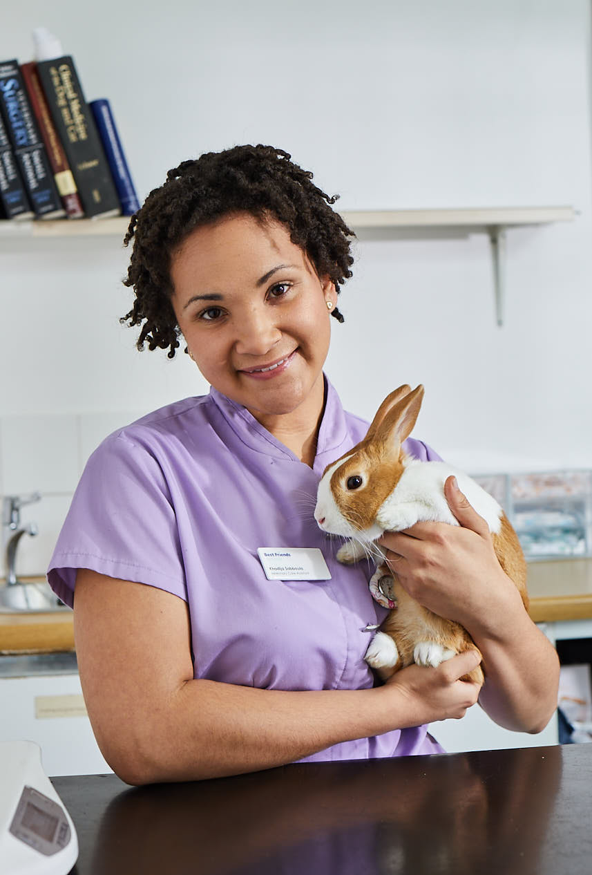Best Friends Vet Group, Corby Corby 01536 745212