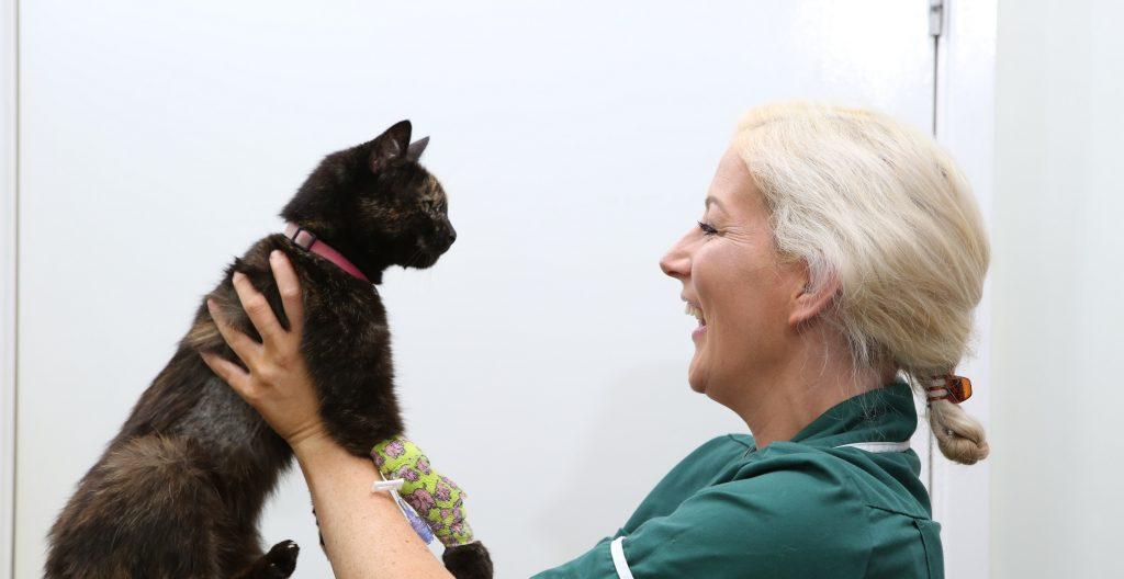 Chantry Vets Alverthorpe Veterinary Hospital - Wakefield, West Yorkshire WF2 0AJ - 01924 362464 | ShowMeLocal.com