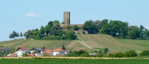 Schneider Immobilien Sinsheim