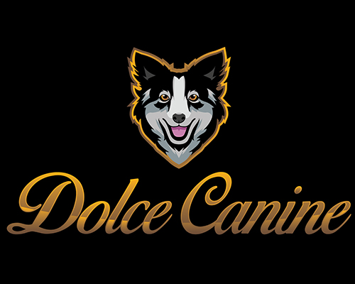 DOLCE CANINE