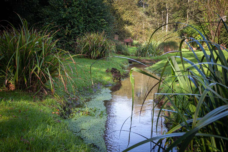 Ar Bradenn, aménagement et création de jardins sur-mesure et d'assainissement paysager