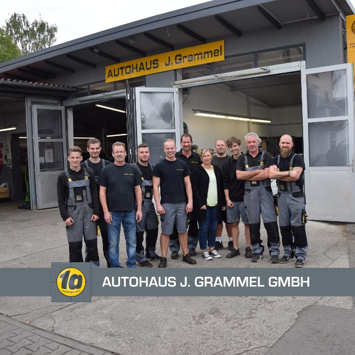 Bild zu Autohaus J. Grammel GmbH in Alsheim in Rheinhessen